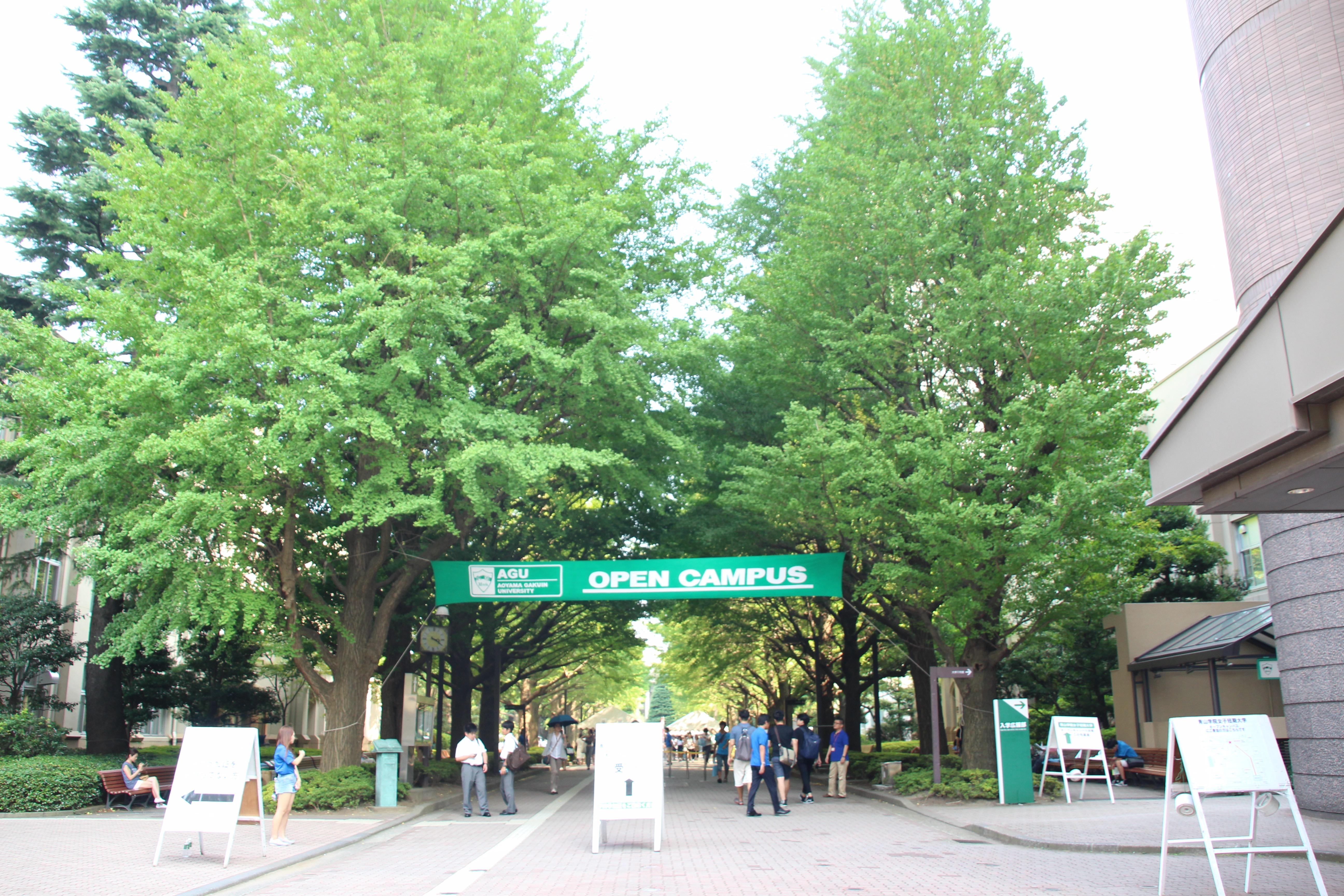 関東 学院 大学 オーキャン