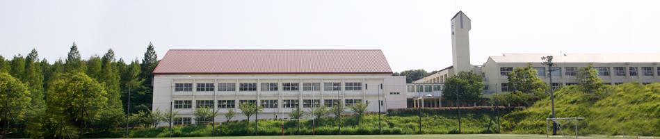 jindaifu