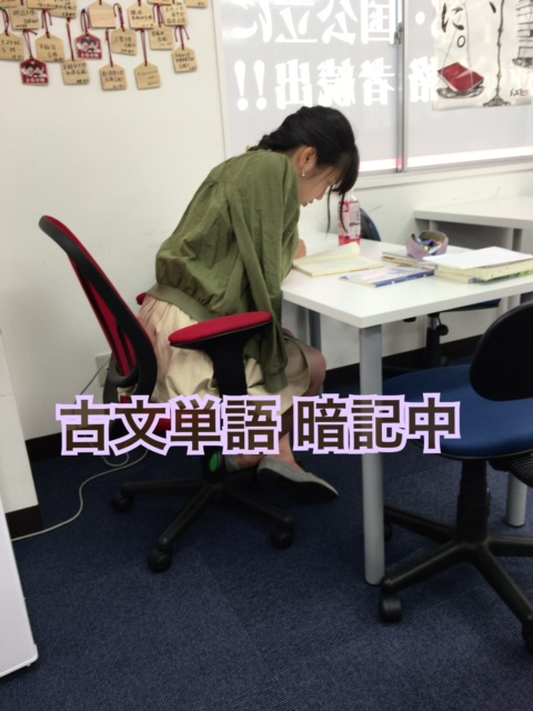 image2 (9)