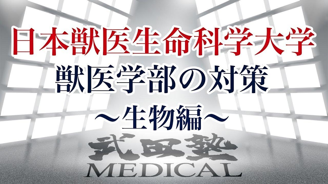 【医学部受験対策!!】日本獣医生命科学大学獣医学部の対策〜生物編〜