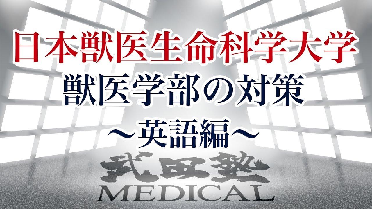 【医学部受験対策!!】日本獣医生命科学大学獣医学部の対策〜英語編〜