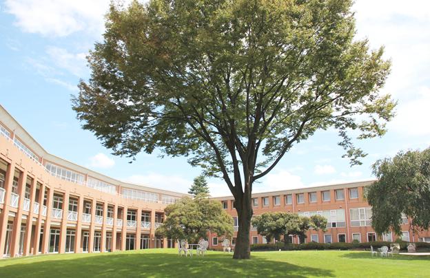 三田国際高校