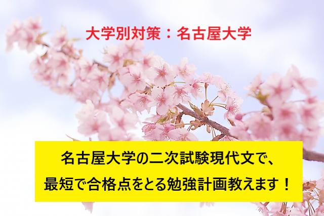 20190307(木)_ブログ画像(名古屋大学二次試験現代文対策 勉強方法)