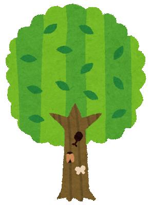 tree2_natsu