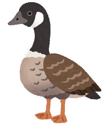 bird_gan
