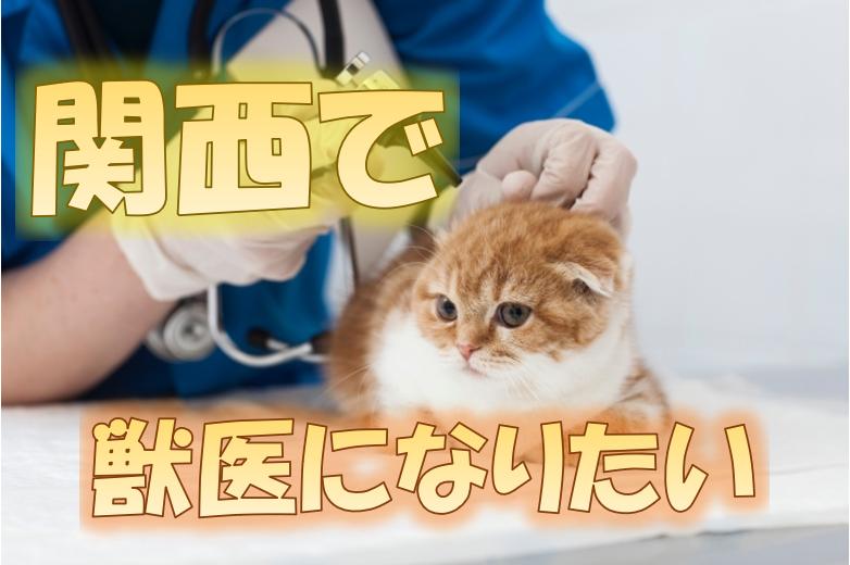 関西で獣医になりたい