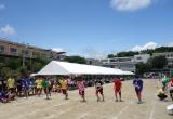 早稲田摂陵 体育祭