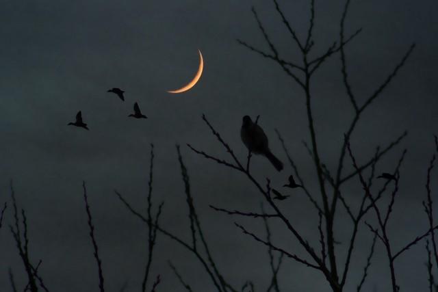 真夜中の空