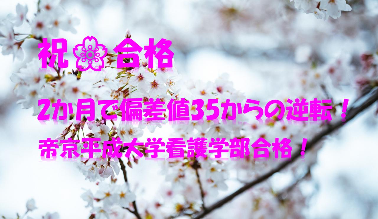 大学 値 偏差 平成 帝京 【2021年版】帝京平成大学の偏差値!河合塾・駿台・ベネッセ・東進