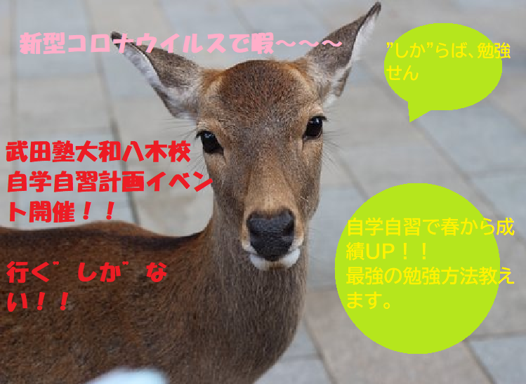 dear my friend