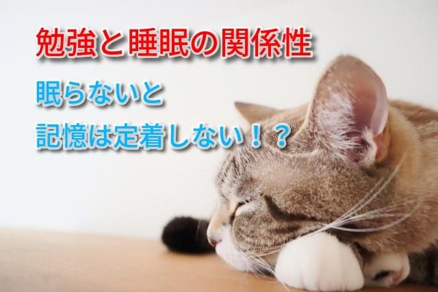 勉強と睡眠の関係性-min