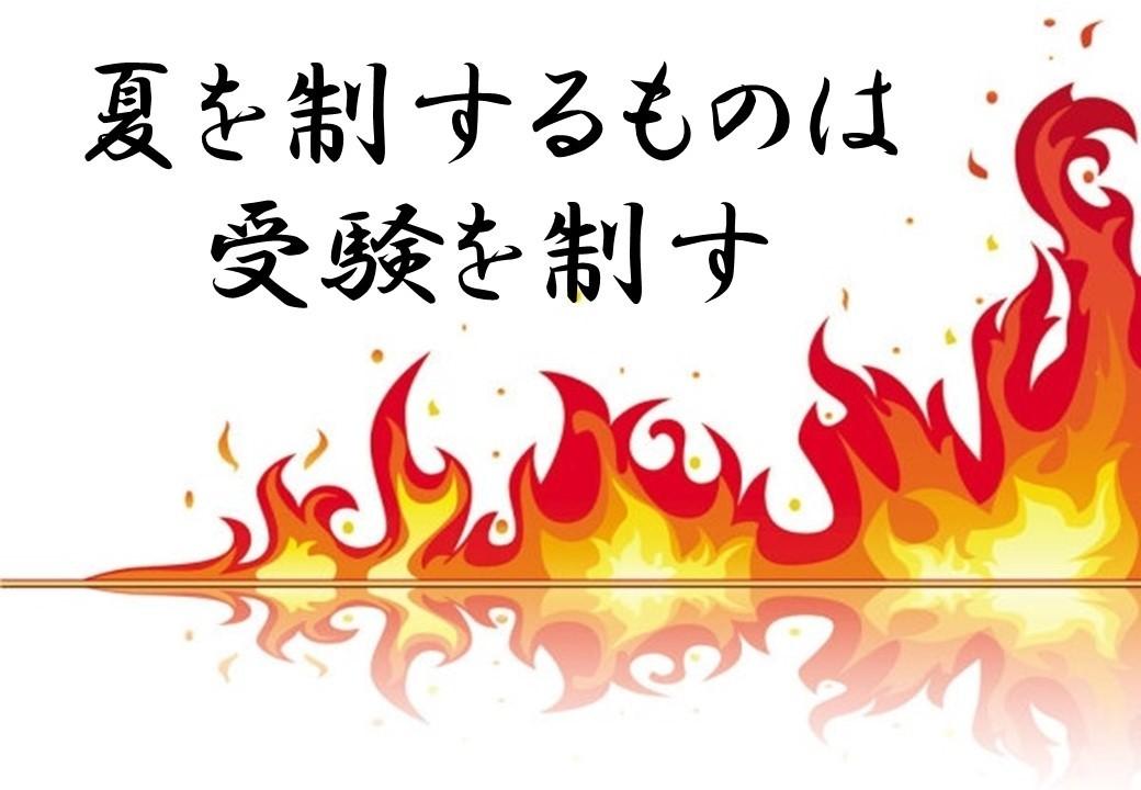 夏 武田塾 東松山
