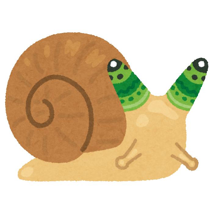 bug_katatsumuri_leucochloridium