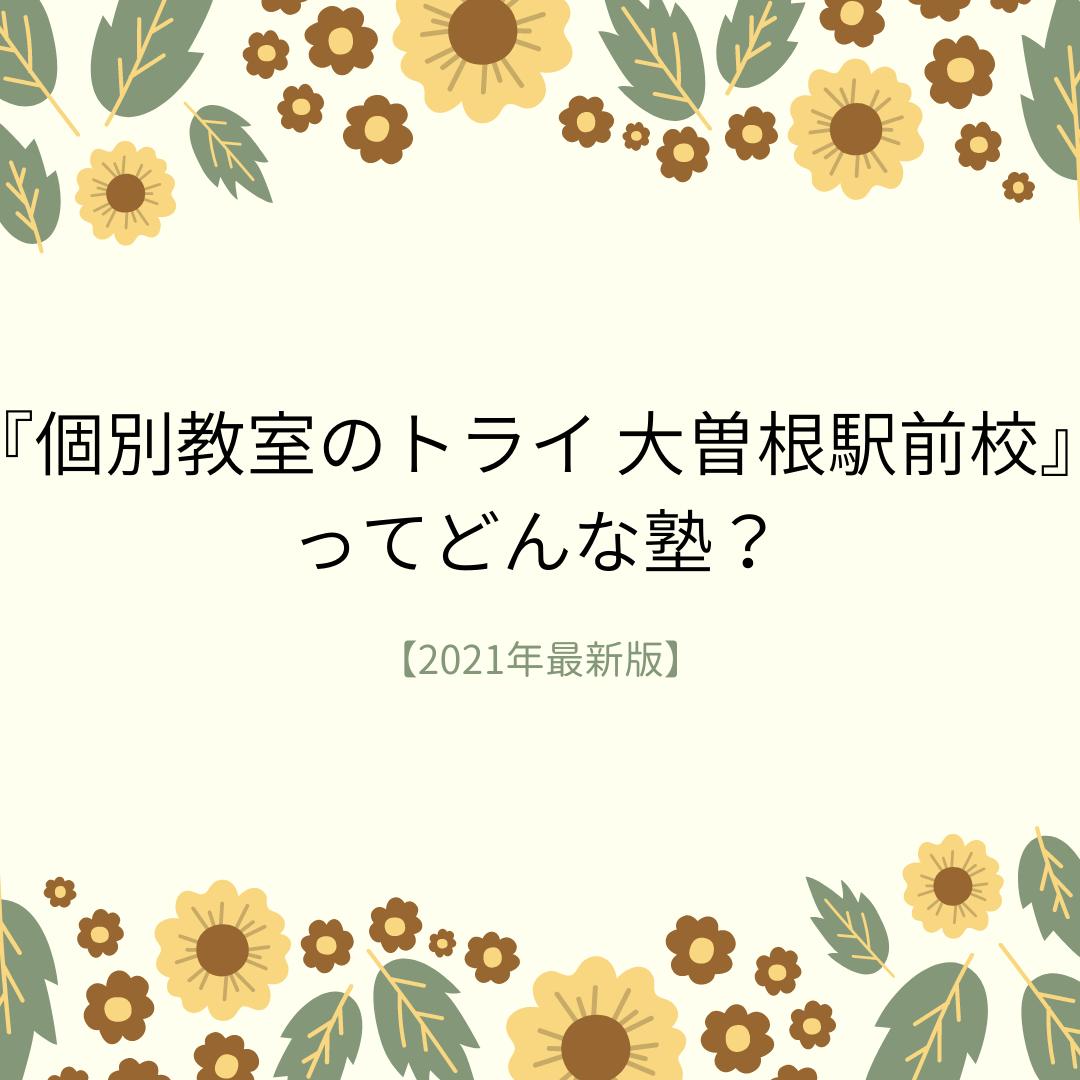 個別指導塾プラボ 大曽根校 ってどんな塾? (3)