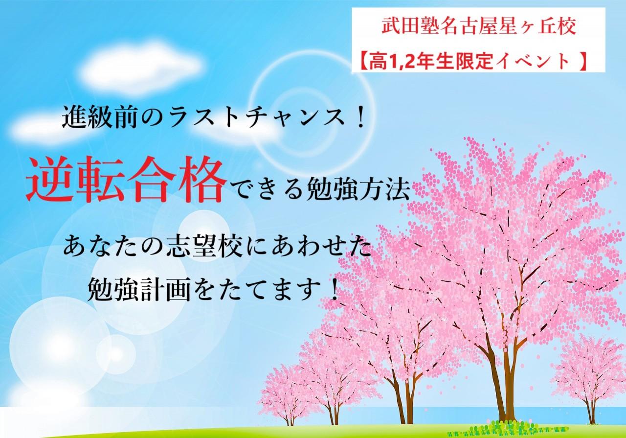 spring-background-4035407_1920
