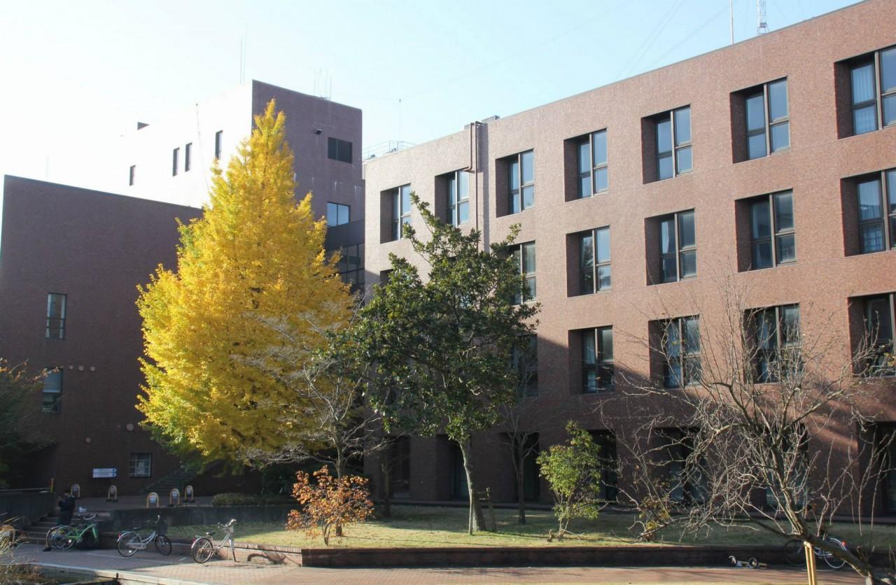 筑波大学2