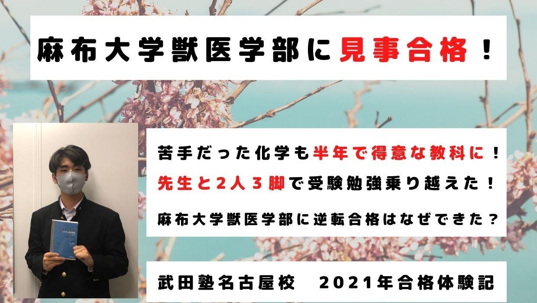 Cherry Blossom Motivational Header Photo  (1)