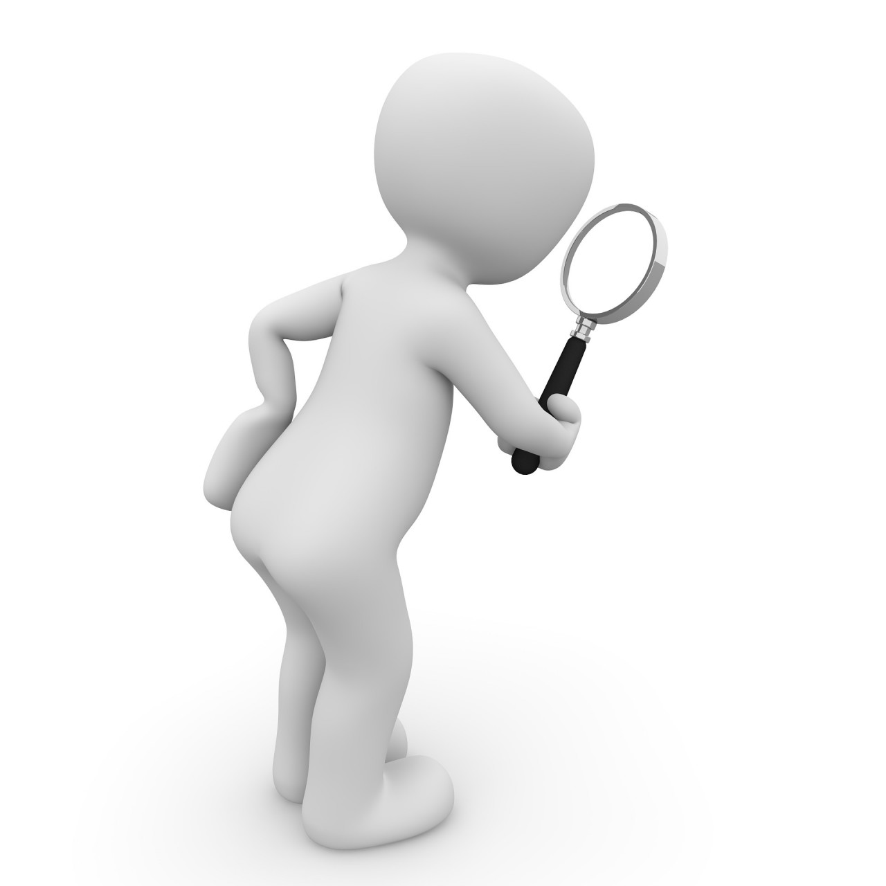 search-1013911_1920