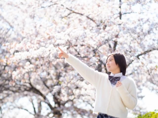 指をさす女の子と桜