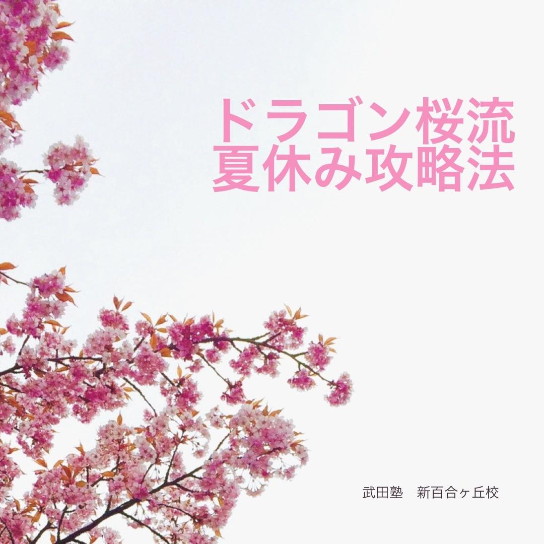 ドラゴン桜 夏休み