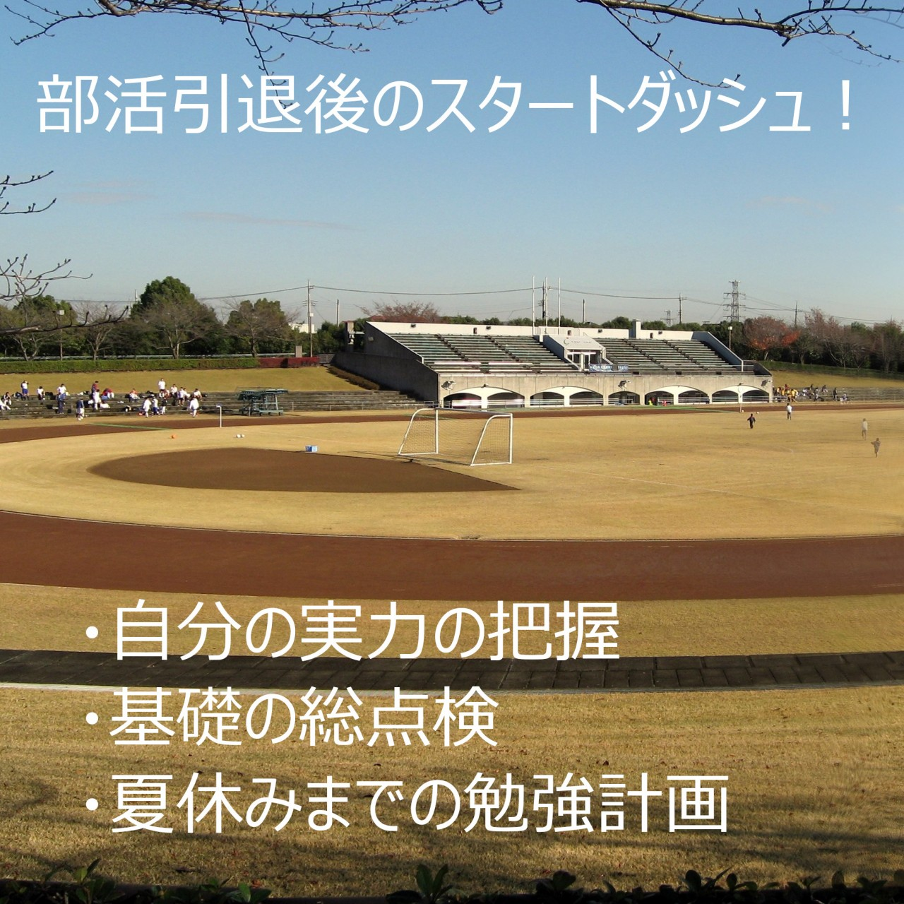 Inagi_Chuo_Park_General_Grounds_in_2008