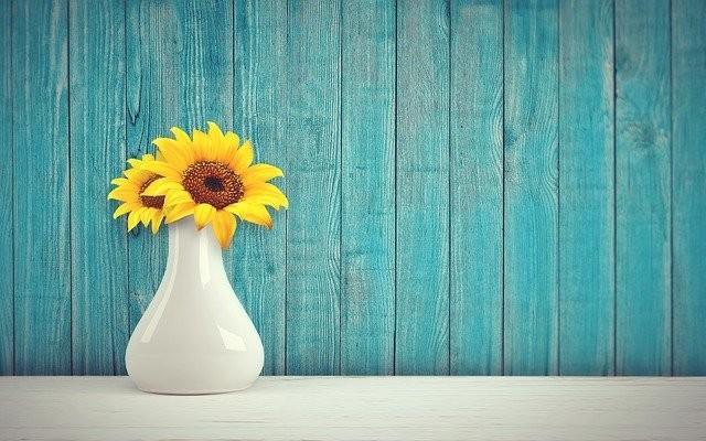 sunflower-3292932_640