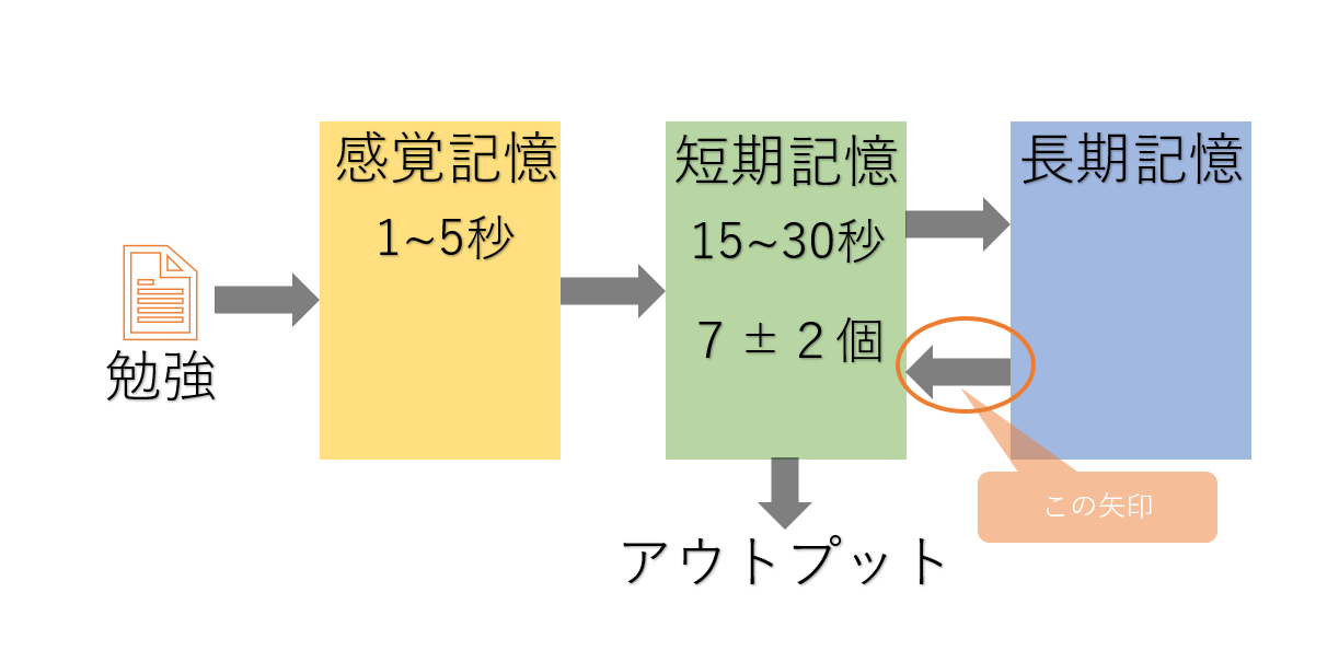 記憶の仕組み(矢印)