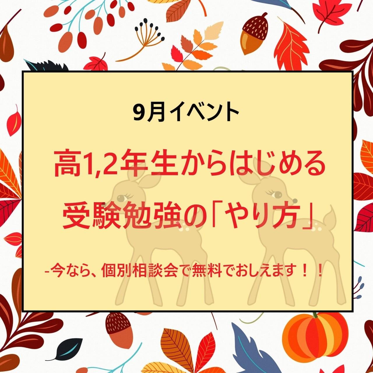 leaves-4393918_1920
